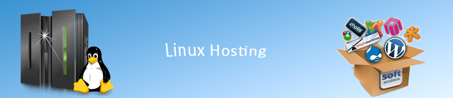 Website Hosting Company in Centurion, Pretoria