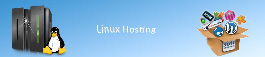 Linux Web Hosting Pretoria