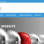 Website Design Company - Recent Project