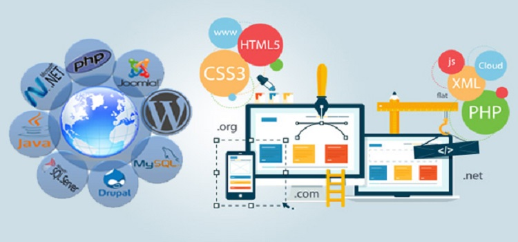 Web Design Agency Johannesburg