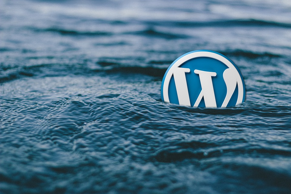 WordPress Developers in PRetoria